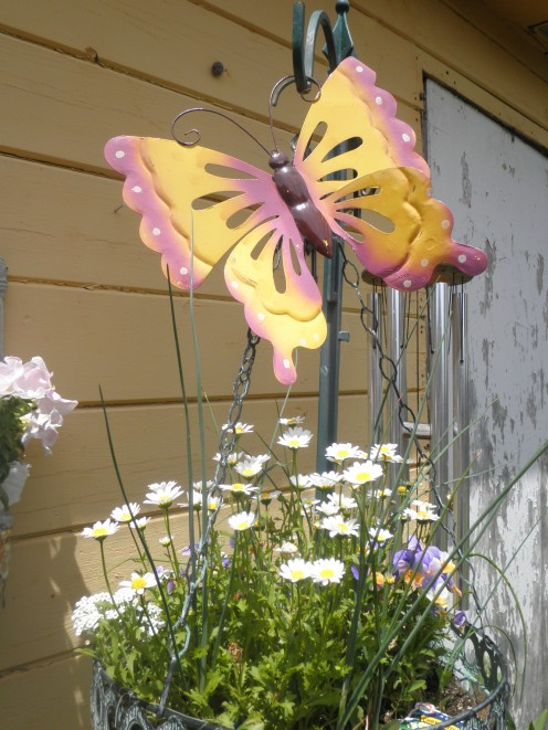 I bought 3 of these butterflies from the dollar store. If I do say so myself, I think they are very unusual additions to my garden! A nice little gift to myself.