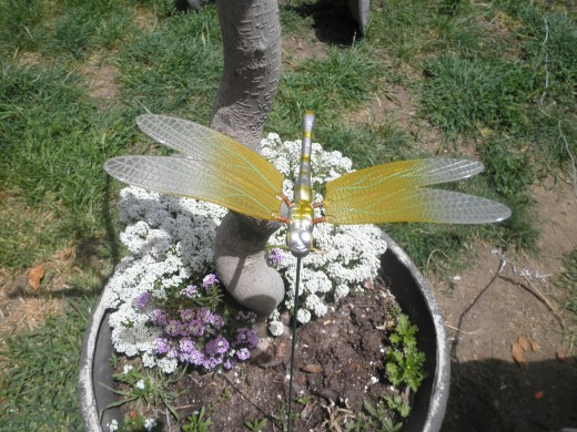 I bought a few of these little moving dragonflies as garden gifts for myself.In the wind the wings fly and it's really a cute garden addition. A gardener can always find room for something like this.