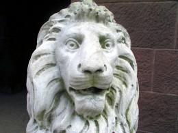 Lion sculpture up close