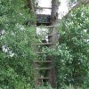 Free deer hunting stand plans for Permanent tree stand