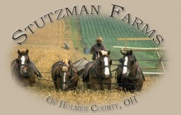 Stutzman Certified Organic Farms