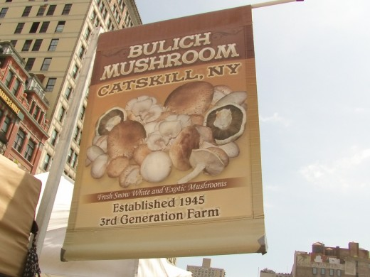 I caught a cool image of the organic Mushroom stand, and a cool banner they used for advertising their products
