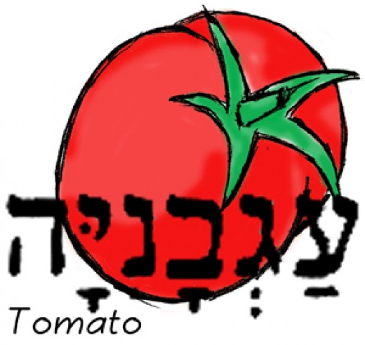 God made them, but tomatoes were not known around the world till the 1500s.