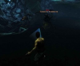 Risen 2 Defeat Warrior Termite and complete Sugar Shipment Quest, on route to becoming a pirate