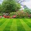 Saving Money by Caring for Your Own Lawn