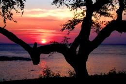 This wonderful red sunset can make for a beautiful venue for an outdoor wedding.