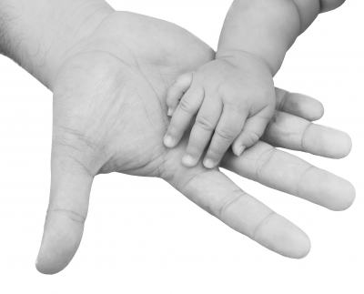 There are many options surrounding banking stem cells from babies.