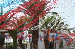 A village festival full of colour