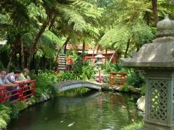 A typical Madeiran garden full of flora and fauna