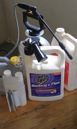 Where to Buy The Best Bed Bug Killing Sprays