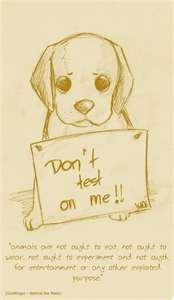 Please don't hurt or kill me !