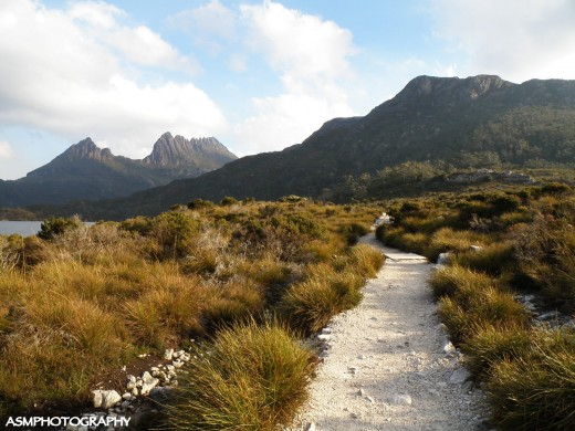 Trail to Cradle Mountain with Cradle Mountain in the background.