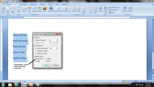 Figure 3. 'Convert Text to Table' dialogue box