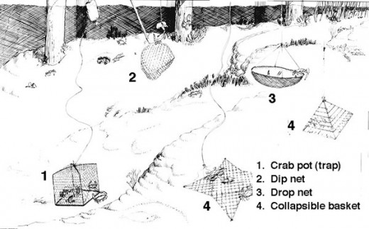 Various Methods Of Catching Blue Crabs
