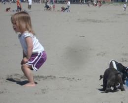 Puppies and small kids, a perfect beach combination with plenty of Kodak moments.