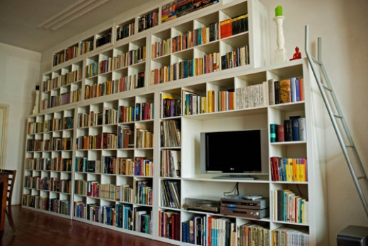If I had this bookshelf, I could fill it with books I own that I've never actually read.