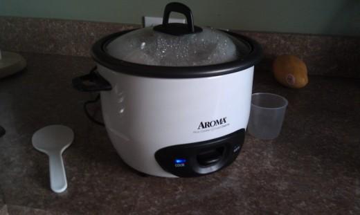 rice cooker - I love rice