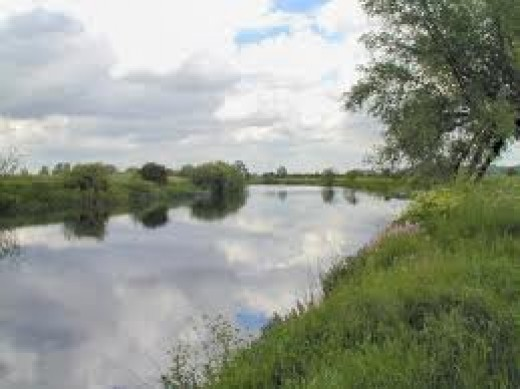 River Trent in Nottinghamshire, a quiet rural spot, very much as it would have been in AD1014-1016