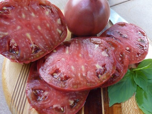 Big, flavorful tomatoes require AT LEAST six hours of sunlight a day.