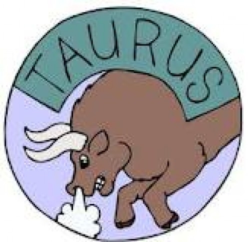 Taurus Characteristics You Were Always Curious About
