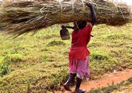 Transporting water for drinking in Uganda