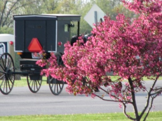 The Amish build quality long lasting products.