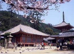 View of Jidoji Temple.