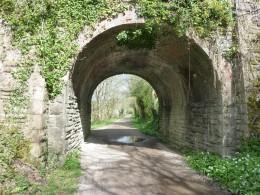 The Camel Trail running beneath a road bridge.
