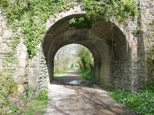 The Camel Trail running beneath a road bridge.