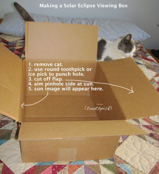 with help from my cat.