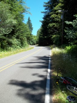 This is my testing ground for only the best energy drinks -- a steep road with no traffic, my bicycle, and a sunny day.