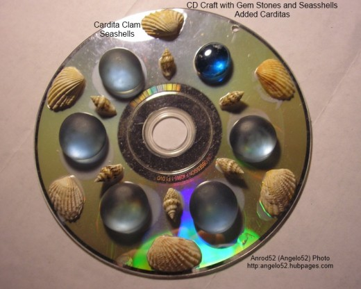 Add cardita seashells on edge of disc