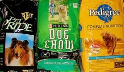 Best dog food?