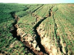 Soil Erosion-The Three Main Causes and Fixes
