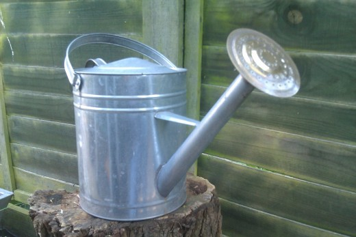 Use a watering can instead of garden hose