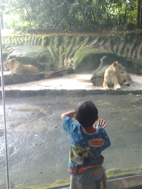 Make outing as educational and fun outing. Zoo, Botanical gardens etc.