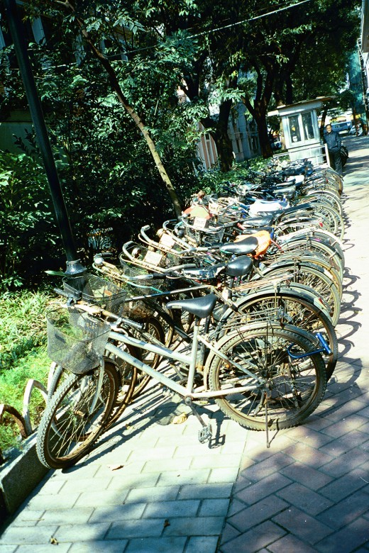 Chinese Bicycle parking: Rows of bicycles neatly parked!