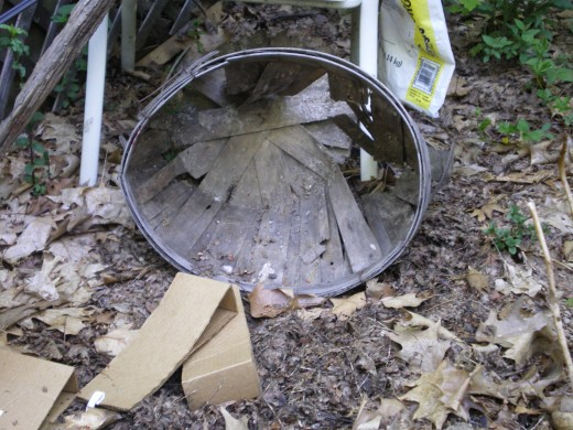 Garden debris, leaf litter, etc. needs to be removed.