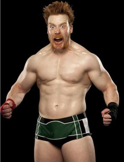 The Celtic Warrior Sheamus
