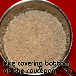 Rice should fully cover the bottom evenly.