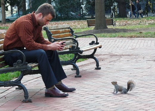 It looked like the squirrel was asking if the text was for him