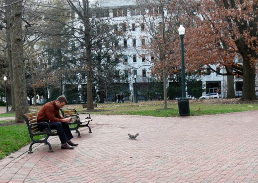Young man reading his text messages on his phone watched by a curious squirrel