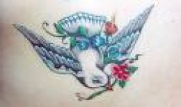 Dove Tattoo Designs Gallery 27