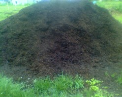 Bark Mulch Helps to Make Your Garden Beautiful