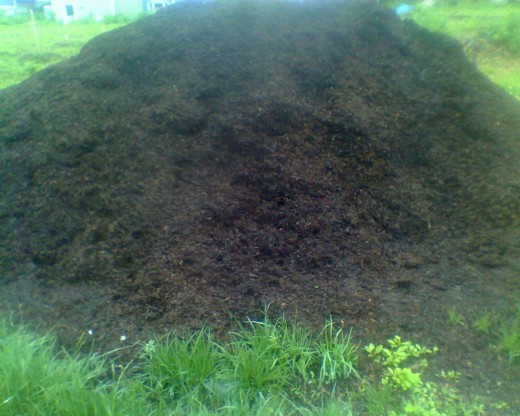 1 of 3 mountains of bark mulch shared by fellow co-housing community members
