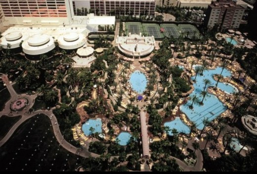 Flamingo pool