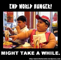 What would it take to eliminate world hunger? - the longer answer.