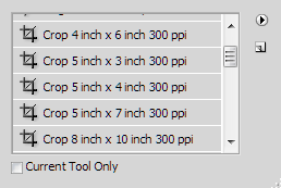 Here are a few of the cropping presets that Photoshop provides.