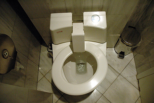 Unusual bathroom Photo: caribb via flickr