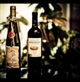 2006 Colli Orientali Pinot Grigio Fruili, Italy & 2004 Vina De Barrancas Malbec mendozza, Argentina